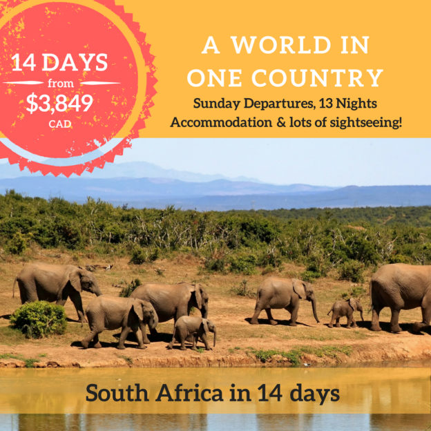 Travel Wonders South Africa Option 2 (2)